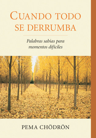 Cuando todo se derrumba (When Things Fall Apart) by Pema Chodron