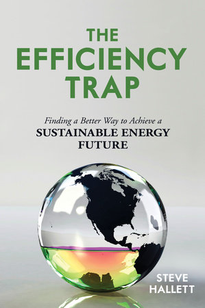 The Efficiency Trap by