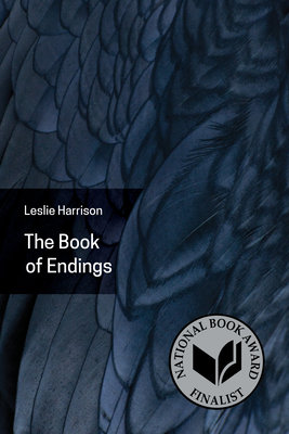Cover of The Book of Endings