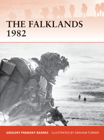 The Falklands 1982 by