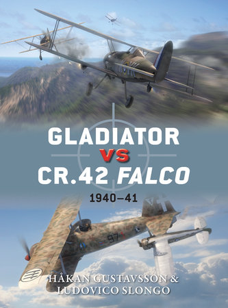 Gladiator vs CR.42 Falco by Hakan Gustavsson