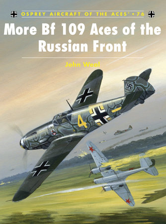More Bf109 Aces of the Russian Front by