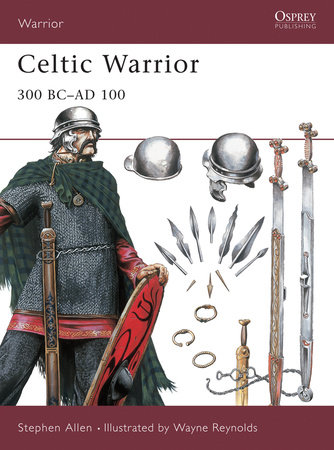 Celtic Warrior by Stephen Allen