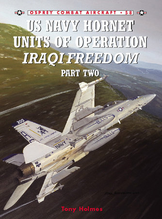 US Navy Hornet Units of Operation Iraqi Freedom (Part Two) by