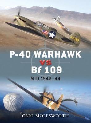 P-40 Warhawk vs Bf 109 by