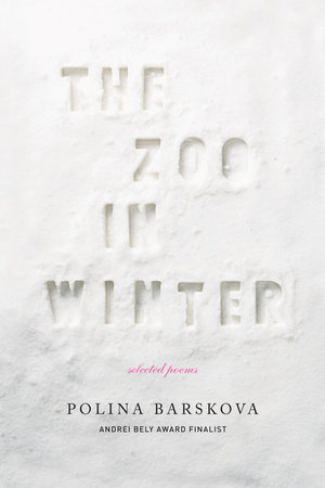 The Zoo in Winter by