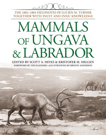 Mammals of Ungava and Labrador by