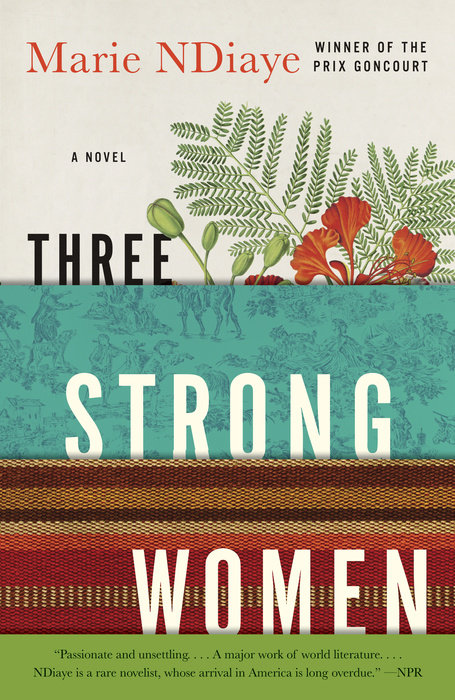 Three Strong Women by Marie NDiaye