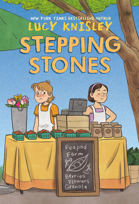 Book cover for Stepping Stones