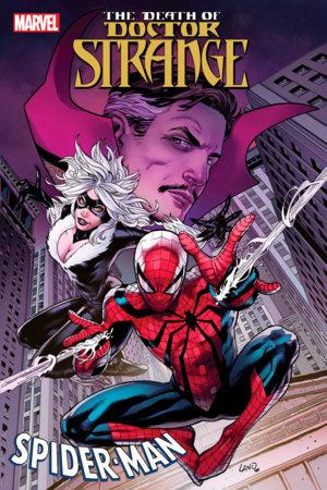 DEATH OF DOCTOR STRANGE: SPIDER-MAN 1