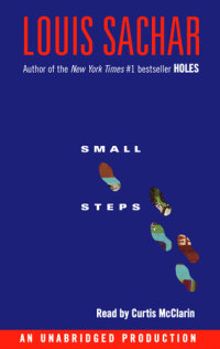 Cover of Small Steps cover