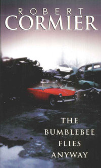 Book cover for The Bumblebee Flies Anyway