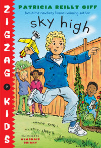 Book cover for Sky High