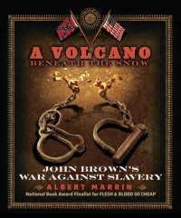 Book cover for A Volcano Beneath the Snow