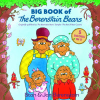Book cover for Big Book of The Berenstain Bears