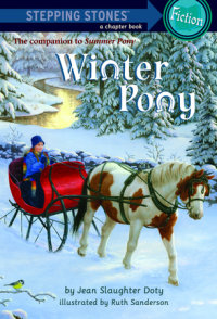 Book cover for Winter Pony