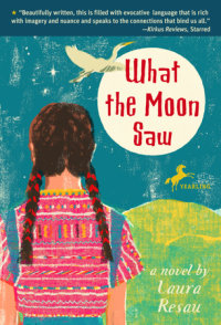 Cover of What the Moon Saw cover