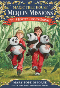 Book cover for A Perfect Time for Pandas