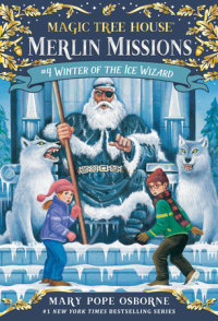 Cover of Winter of the Ice Wizard cover