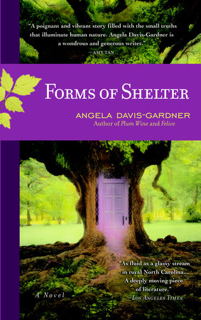 Forms of Shelter book cover