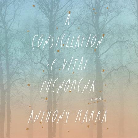 A Constellation of Vital Phenomena book cover