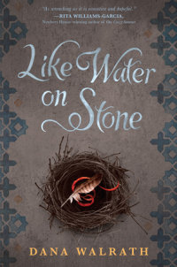 Cover of Like Water on Stone cover