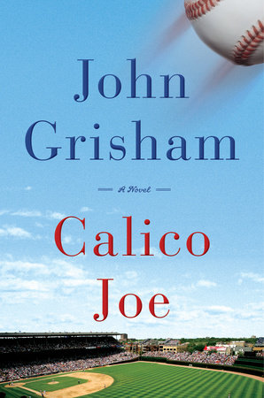 Cover image for Calico Joe