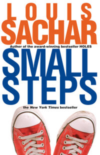 Cover of Small Steps