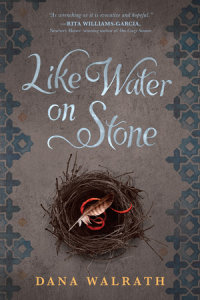 Cover of Like Water on Stone