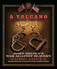 Cover of A Volcano Beneath the Snow cover
