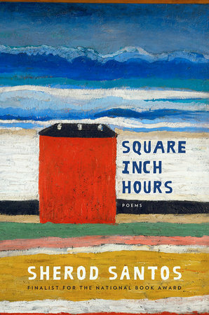 Cover of Square Inch Hours