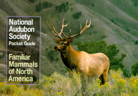 National Audubon Society Pocket Guide to Familiar Mammals