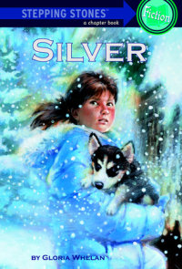 Book cover for Silver