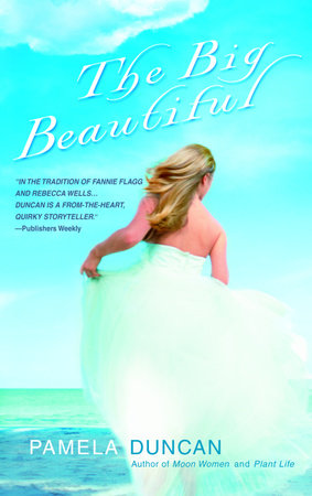 The Big Beautiful book cover