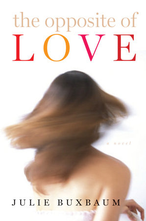 The Opposite of Love book cover