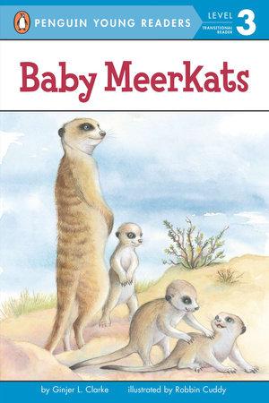 Baby Meerkats