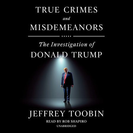 True Crimes and Misdemeanors book cover