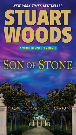 Son of Stone book cover