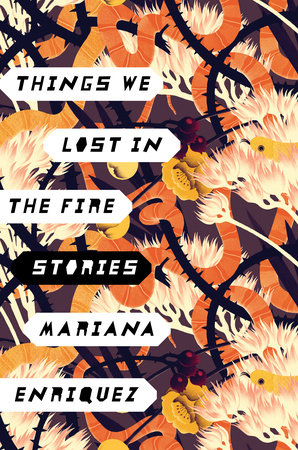 Things We Lost in the Fire book cover