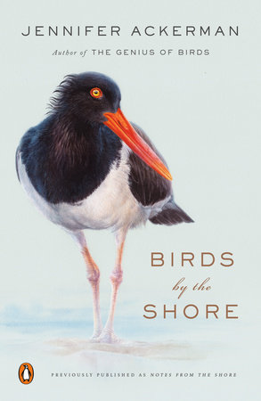 Birds by the Shore