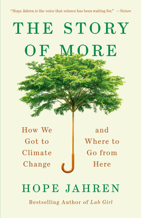 Cover image for The Story of More