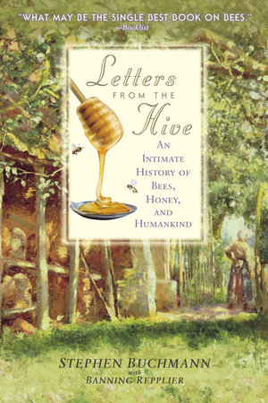 Letters from the Hive - Penguin Random House Retail