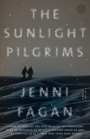 The Sunlight Pilgrims book cover
