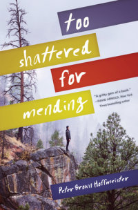 Book cover for Too Shattered for Mending