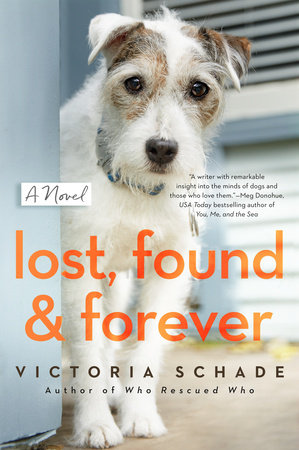 Cover image for Lost, Found, and Forever