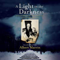 Cover of A Light in the Darkness cover