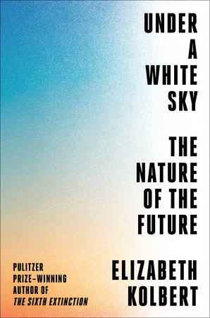 Cover image for Under a White Sky