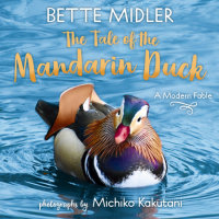 Cover of The Tale of the Mandarin Duck cover