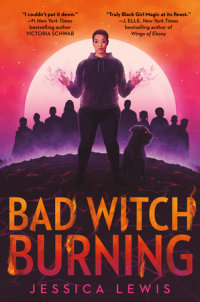 Book cover for Bad Witch Burning