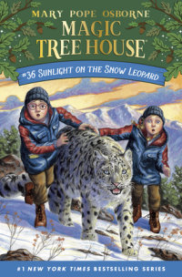 Book cover for Sunlight on the Snow Leopard
